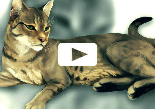 Tabby Cat - Speed Painting