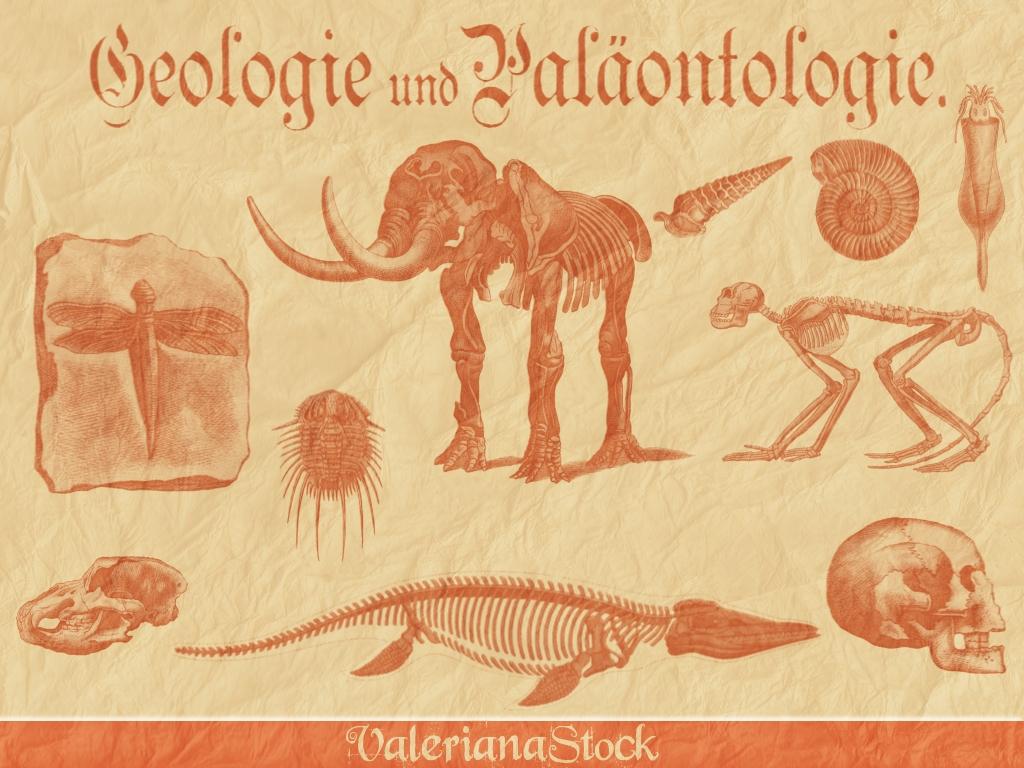 Paleontology GIMP Brushes