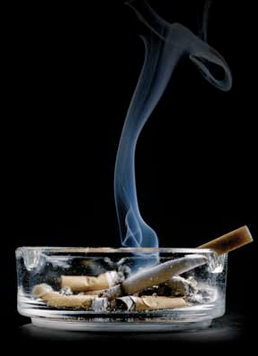 my persuasive essay on smoking by pilliercp on