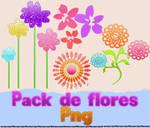 Pack de Flores