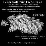 Fur Brush 3