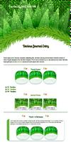Green Merry Christmas Journal