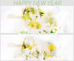 /// Happy New Year ///