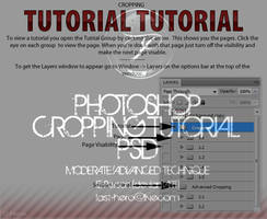 Cropping Tutorial