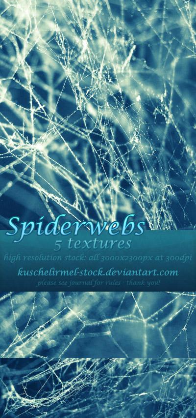 Spiderwebs - Texture Pack by kuschelirmel-stock