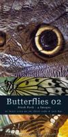 Butterflies 02 - Stock Pack