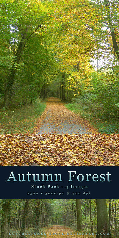 Autumn Forest - Stock Pack by kuschelirmel-stock