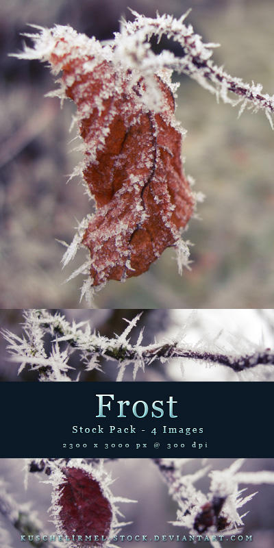 Frost - Stock Pack by kuschelirmel-stock