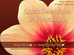 Quick Selections in Photoshop by kuschelirmel-stock
