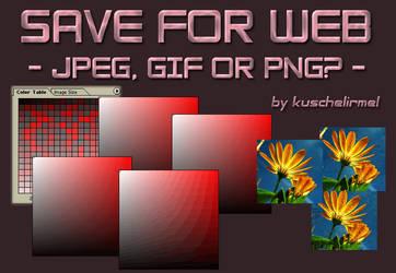Save for Web by kuschelirmel-stock