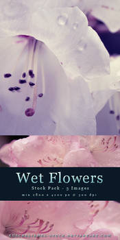 Wet Flowers - Stock Pack