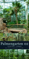 Palmengarten 02 - Stock Pack