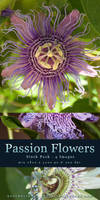Passion Flowers - Stock Pack