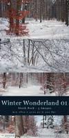 Winter Wonderland 01 - Pack