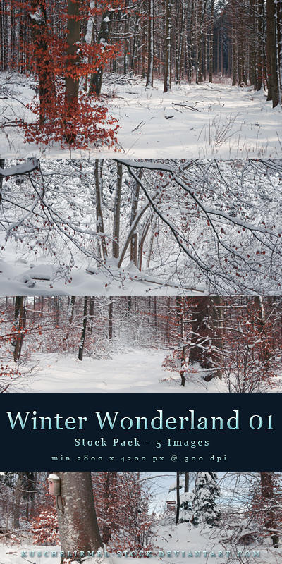 Winter Wonderland 01 - Pack by kuschelirmel-stock