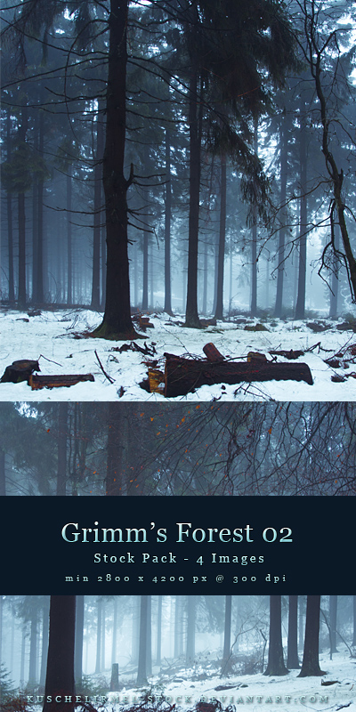 Grim's Forest 02 by kuschelirmel-stock by kuschelirmel-stock