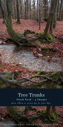Tree Trunks Stock Pack