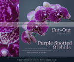 Purple Spotted Orchids Cut Out