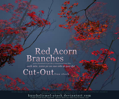 Red Acorn Branches Cut Out