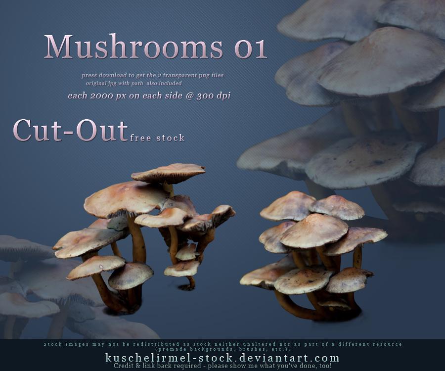 Cut Out Mushrooms Pack 01