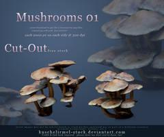 Cut Out Mushrooms Pack 01 by kuschelirmel-stock