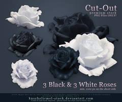 Black and White Roses Precut