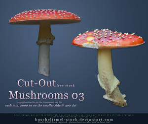 Cut Out Mushrooms Pack 03 by kuschelirmel-stock