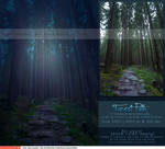 Forest Path Premade