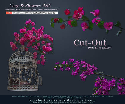 Cage and Flowers Cut-Out PNG