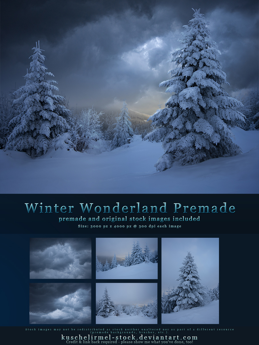 Winter Wonderland Premade with Original Stock