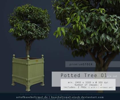 Potted Tree 01 pre-cut Premium Stock
