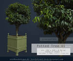 Potted Tree 01 pre-cut Premium Stock by kuschelirmel-stock
