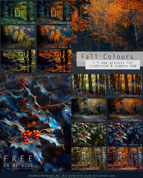 Fall Colours - Free Lightroom + CameraRAW Presets