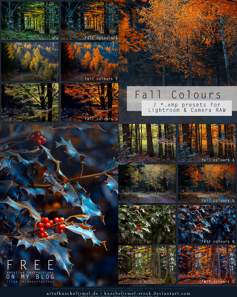 Fall Colours - Free Lightroom + CameraRAW Presets by kuschelirmel