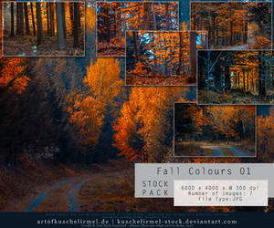 Fall Colours Stock Pack 01 by kuschelirmel-stock