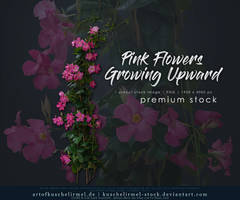 Pink Flowers Growing Upward - Premium cut-out by kuschelirmel-stock