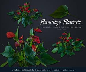 Flamingo Flower precut by kuschelirmel-stock