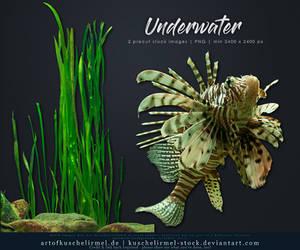Underwater Cut-Out by kuschelirmel-stock