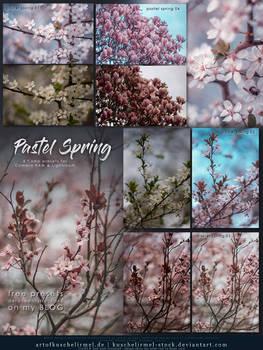 Pastel Spring - Free Lightroom + CameraRAW Presets