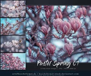 Pastel Spring 01 - Stock Pack by kuschelirmel-stock