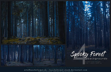 Spooky Forest Background Stock Pack