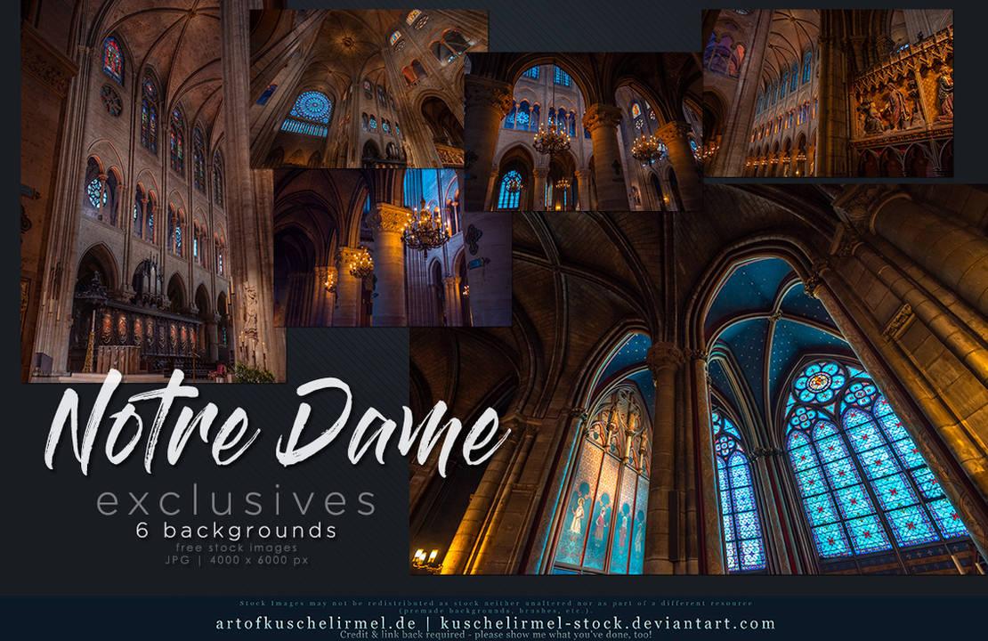 Notre Dame Paris Exclusives