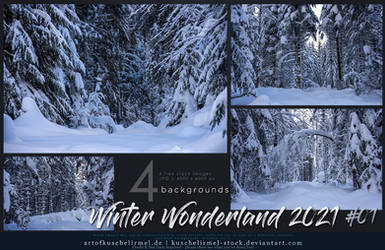 Winter Wonderland 2021 - Stock Pack 01