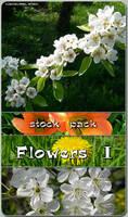 Stock Pack - Flowers 1