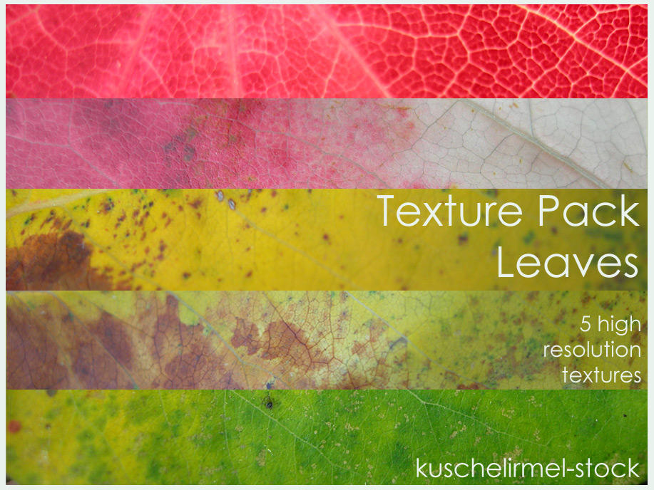 Texture Pack Leaves by kuschelirmel-stock