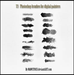 73 PS BRUSHES