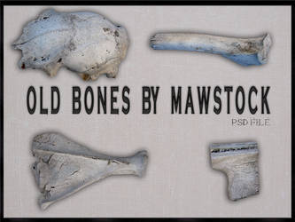 OLD BONES PSD by mawstock