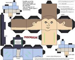 PB1: Michael Scofield Cubee