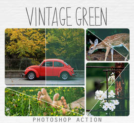 Vintage dark green action