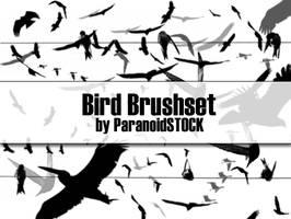Bird Brushset by paranoidstock